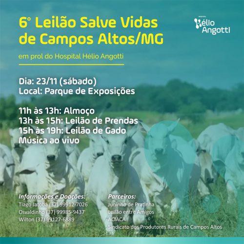 6º Leilão Salve Vidas de Campos Altos